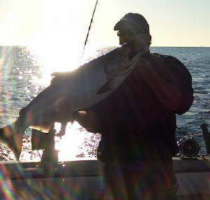 Lp news for Deep sea fishing daytona